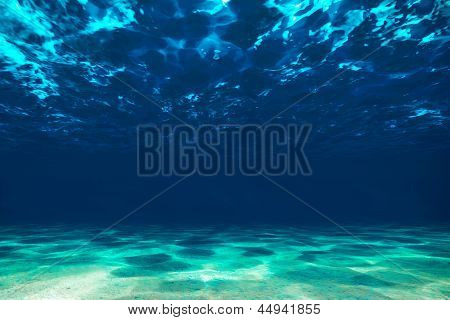 Ocean Bottom,  View Beneath Surface