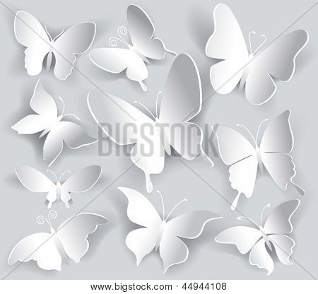 Set of paper butterfly