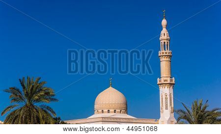 The Maharba mosque and palm trees