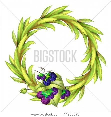 Illustration of the violet berries at the bottom of a leafy round border on a white background