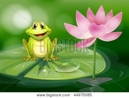 Illustration of a frog beside the pink flower at the pond