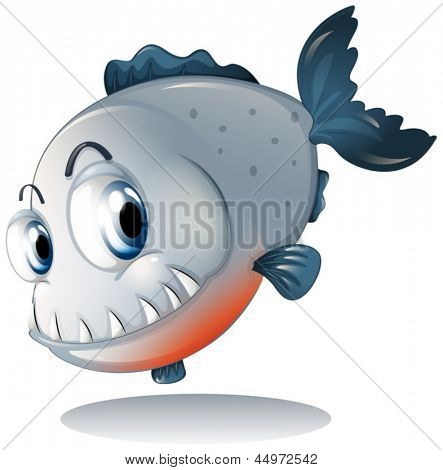 Illustration of a big gray piranha on a white background