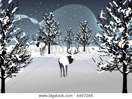 Saison-Serie: Winterlandschaft mit Schnee und Hirsche