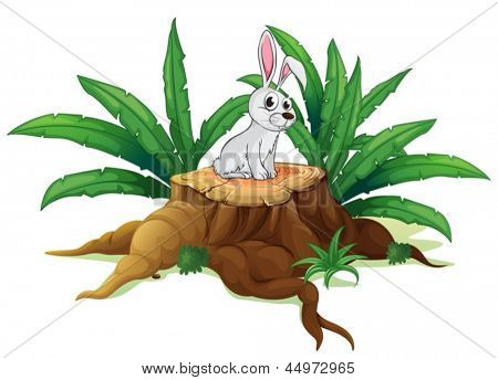 Illustration of a bunny above a trunk on a white background