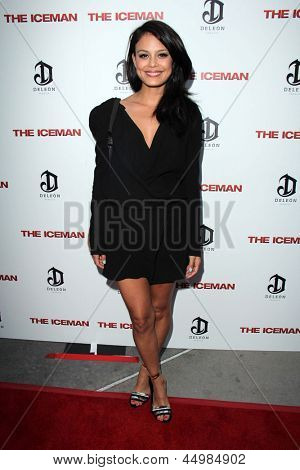 LOS ANGELES - APR 22:  Jaimie Alexander arrives at