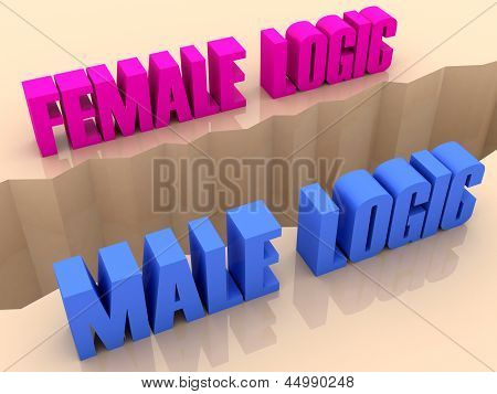 Two phrases FEMALE LOGIC and MALE LOGIC split on sides separation crack.