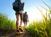 stock photo of greenery  - Hikers with backpacks walking through a meadow with lush grass - JPG