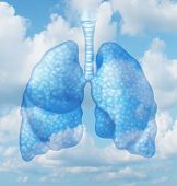 stock photo of oxygen  - Clean air quality concept and healthy breathing in a pollution free envoironment represented by human lungs in a summer sky background as a symbol of healthful living - JPG