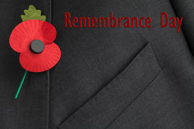 stock photo of lapel  - Poppy on jacket lapel for Poppy Day or Remembrance Day with text reading  - JPG