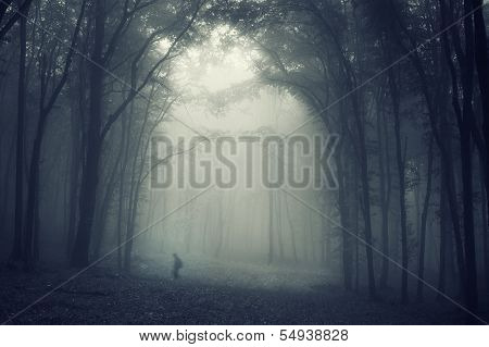 Man walking in a dark mysterious forest with fog