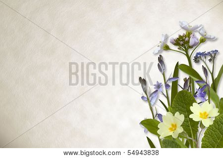 Flowers On Parchment Background