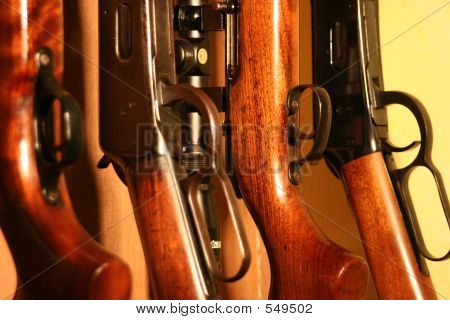 Rack Of Rifles