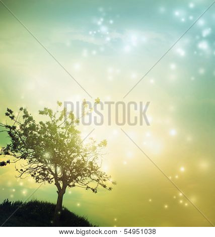 Tree Silhouette At Twilight