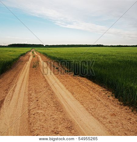 Country road across agriculture field.
