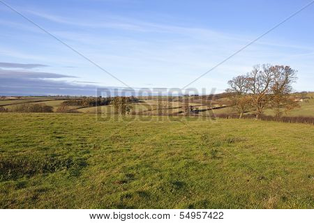 Yorkshire Wolds Meadows