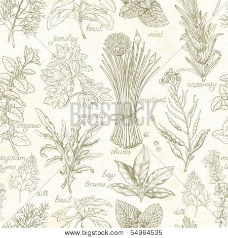 Seamless kitchen background with herbs, vector illustration in vintage style.