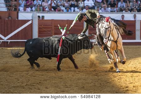 Spanish bullfighter on horseback Diego Ventura bullfighting on horseback playing the head of the bul