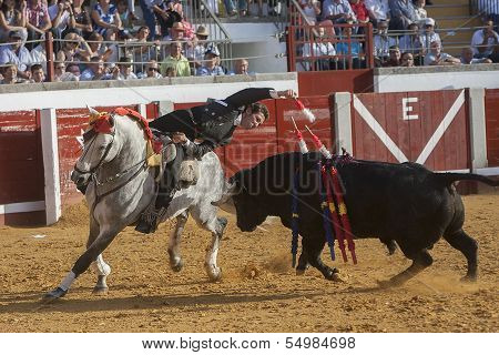 Spanish bullfighter on horseback Leonardo Hernandez putting the bull banderillas in Pozoblanco