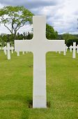 stock photo of comrades  - White crosses on American cemetery in Europe - JPG