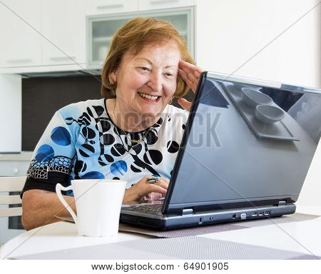 Elder Woman With A Computer