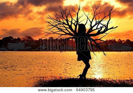 Tree Woman At The Ocean