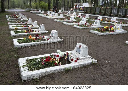 VSEVOLOZHSK, LENINGRAD REGION, RUSSIA - MAY 11, 2014: Graves of soldiers and officers of Red Army, who died during siege of Leningrad (1942-1943)