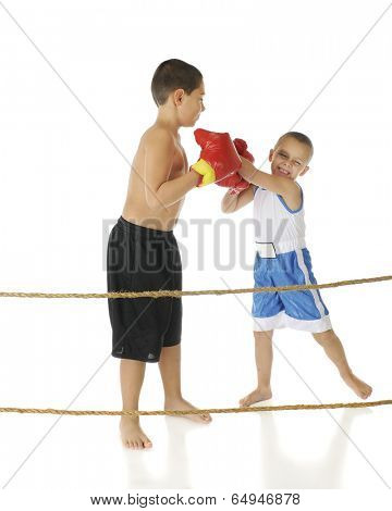 Two brothers boxing behind boxing ring ropes.  The preschooler is whacking away, eyes clothes, as his elementary-aged brother casually blocks his punches.  On a white background.