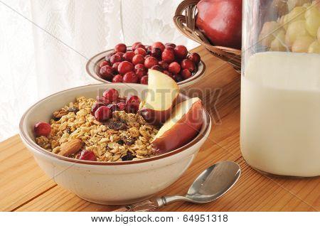 Granola With Fresh Fruit