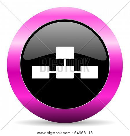 database pink glossy icon