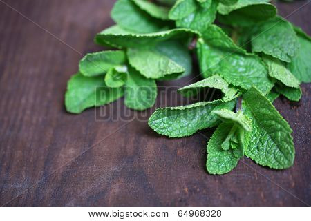 Mint on  color wooden background