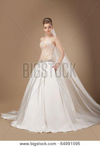 Sophisticated Slender Woman In Long Elegant Dress Posing