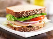 picture of deli  - deli meat sandwich with turkey - JPG