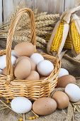 pic of hen house  - Basket with fresh range eggs and cereals to feed hens in the hen house - JPG