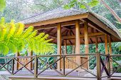 picture of public housing  - River front public rest house in national park - JPG