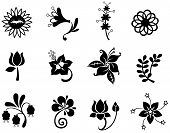 image of hibiscus  - Fantasy flower silhouette icon collection set 2 create by vector - JPG