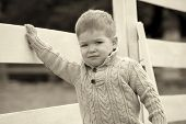 foto of baby cowboy  - 2 years old Baby boy on the a white picket fence beside the horse on sepia brown color - JPG