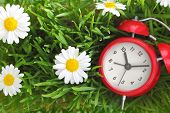 pic of past future  - Red clock on green grass with flowers background  - JPG