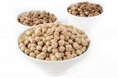picture of pinto  - pinto beans and garbanzo beans in bowl - JPG