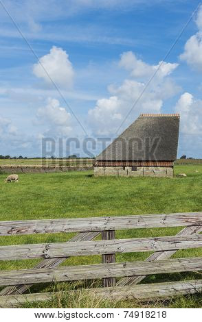 Barn On The Island Of Texel