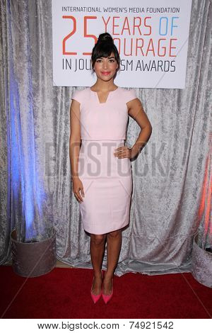 LOS ANGELES - OCT 28:  Hannah Simone at the 25th Courage In Journalism Awards at the Beverly Hilton Hotel on October 28, 2014 in Beverly Hills, CA