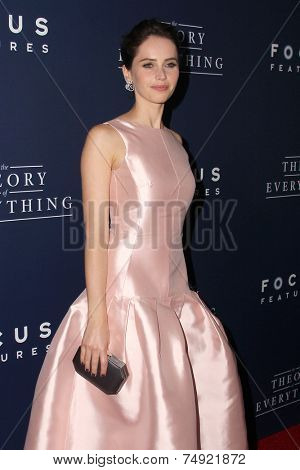 LOS ANGELES - OCT 24:  Felicity Jones at the