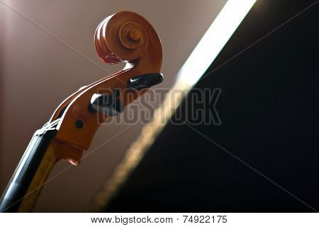 Violoncello detail