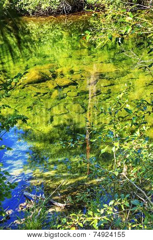 Summer Colors Green Blue Reflection Wenatchee River Valley Near Stevens Pass Leavenworth Washington