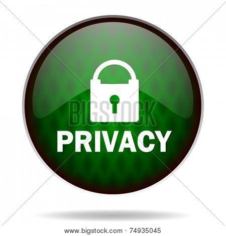 privacy green internet icon