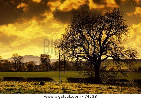 Dusk Over Carnoustie, Scotland