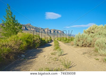 Dirt Road Into Mountains