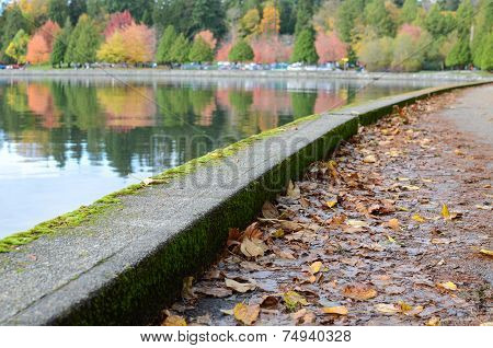 Seawall in the fall