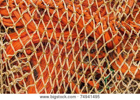 Orange Nets