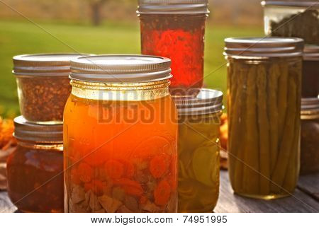 Autumn Canned Goods