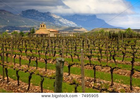 Rioja Winery